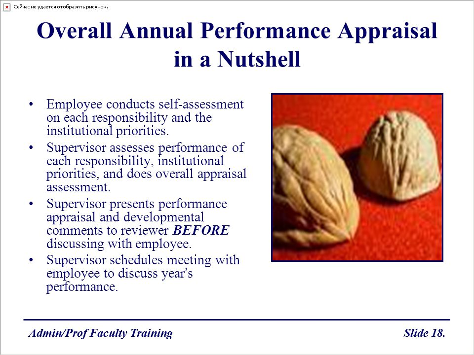 Overall Annual Performance Appraisal in a Nutshell