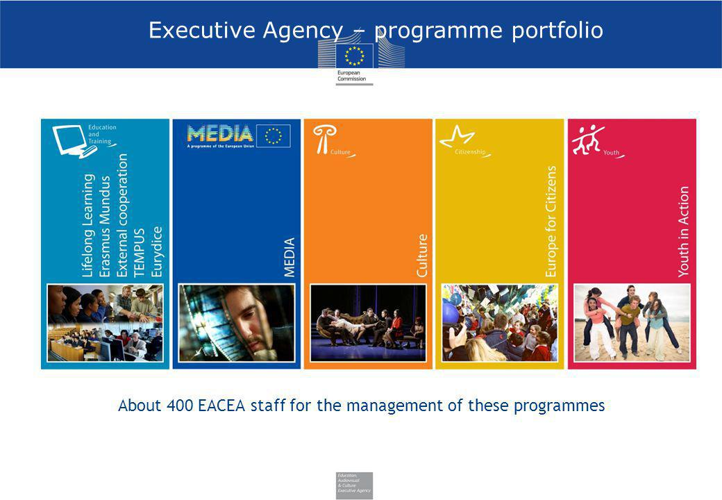 Executive Agency – programme portfolio