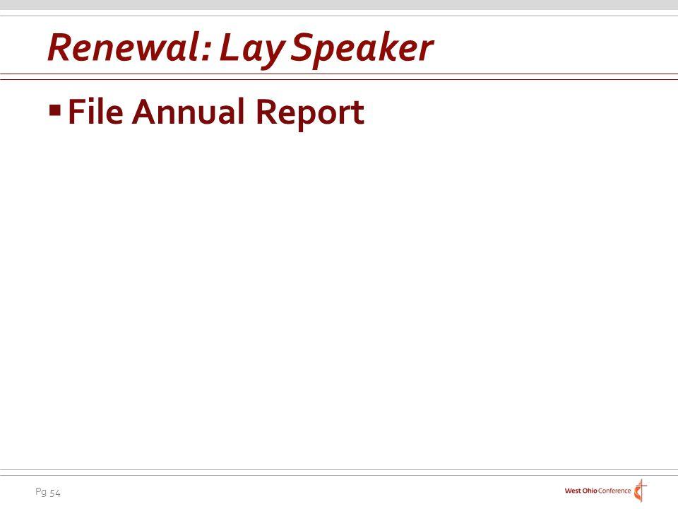 Renewal: Lay Speaker File Annual Report