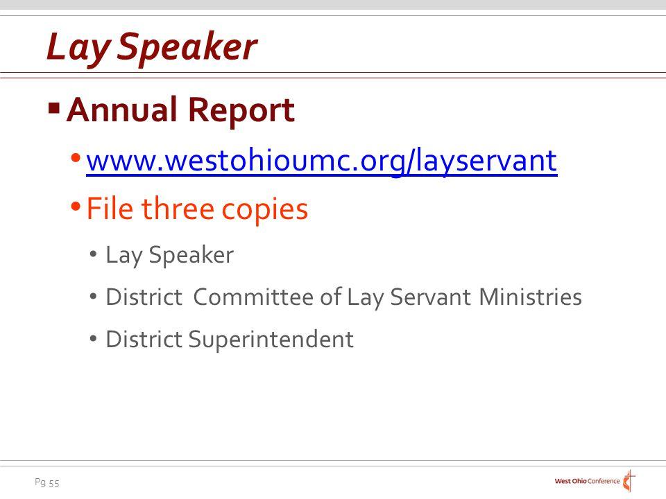 Lay Speaker Annual Report www.westohioumc.org/layservant