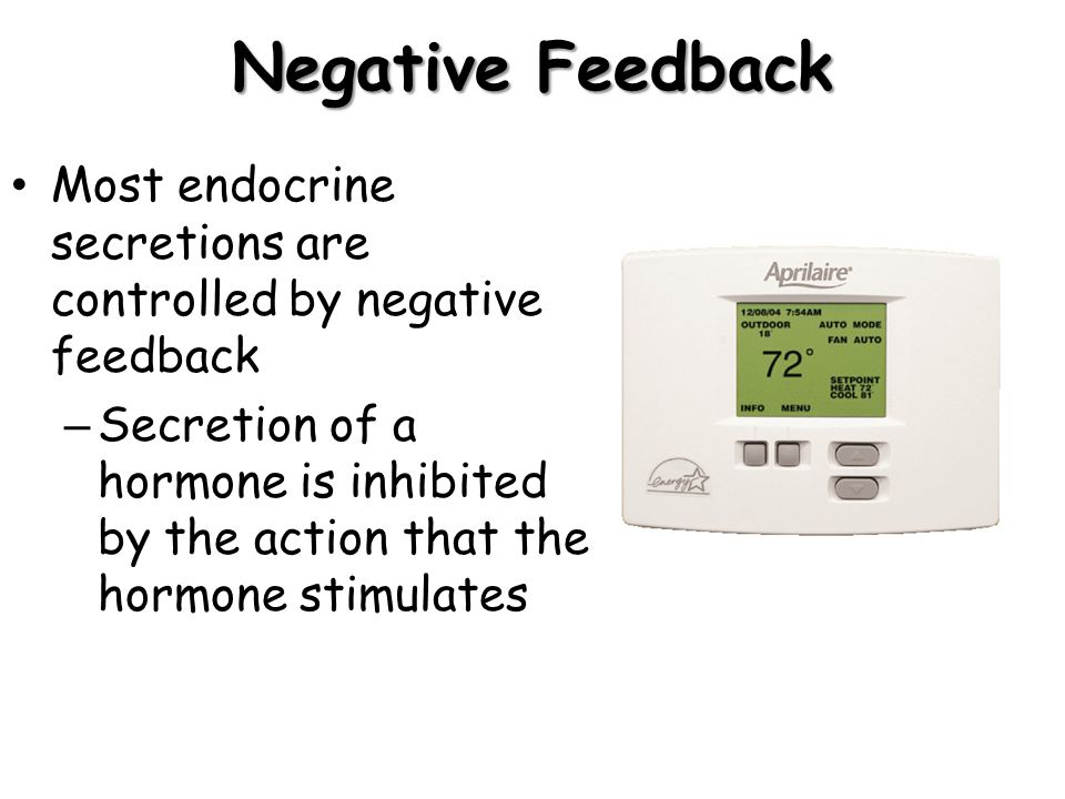 Negative Feedback Most endocrine secretions are controlled by negative feedback.