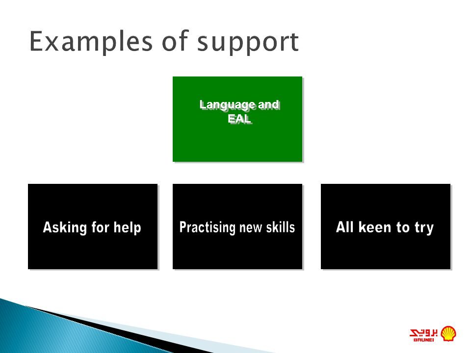 Examples of support Asking for help Practising new skills