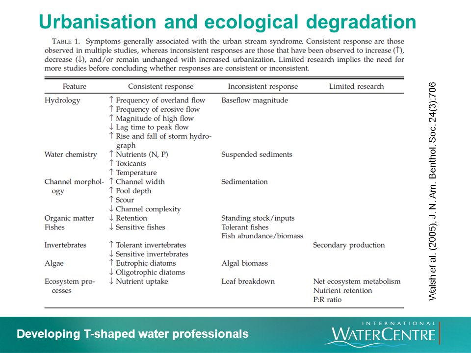 Urbanisation and ecological degradation