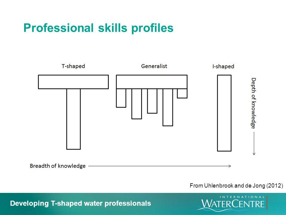 Professional skills profiles