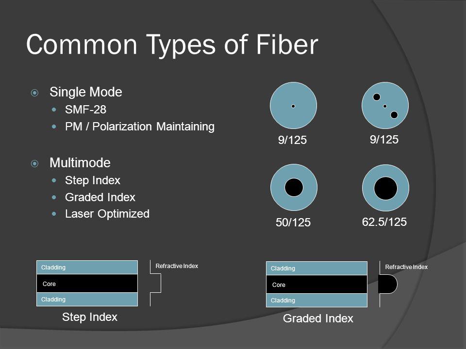 Common Types of Fiber Single Mode Multimode SMF-28