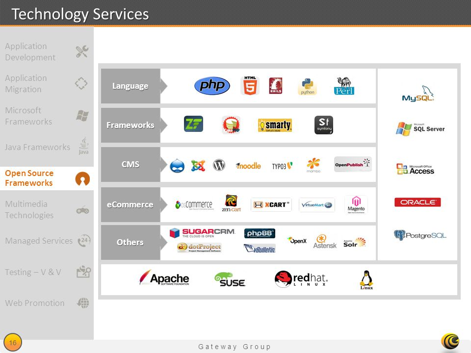 Technology Services Application Development Application Language