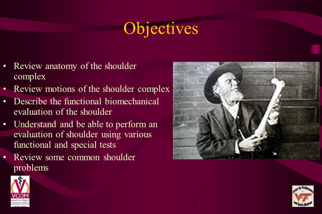 Objectives Review anatomy of the shoulder complex