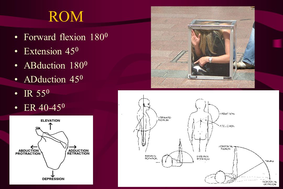 ROM Forward flexion 1800 Extension 450 ABduction 1800 ADduction 450