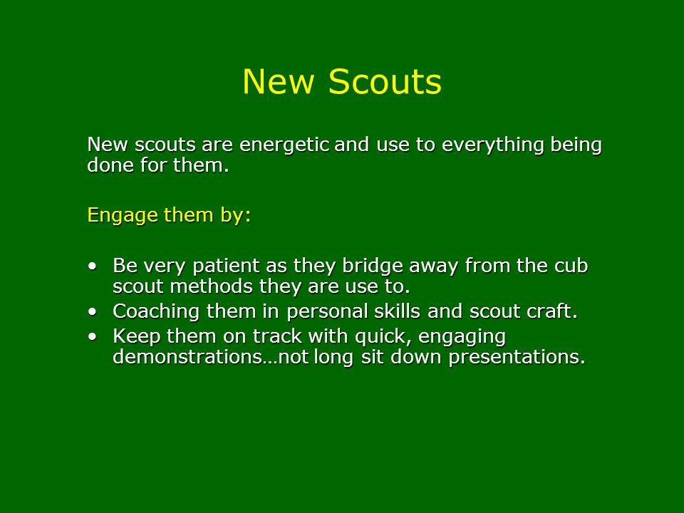 New Scouts New scouts are energetic and use to everything being done for them. Engage them by: