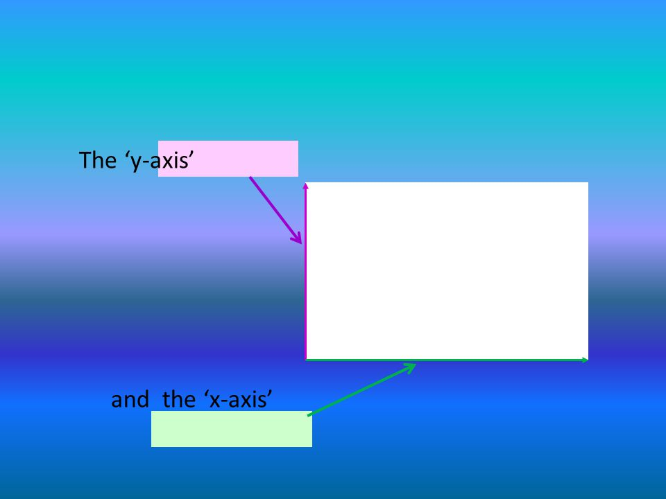 The 'y-axis' and the 'x-axis'
