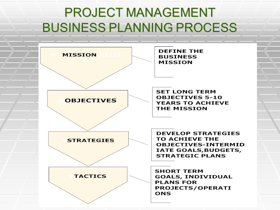 PROJECT MANAGEMENT BUSINESS PLANNING PROCESS