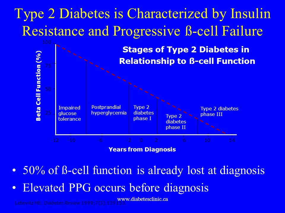 Stages of Type 2 Diabetes in Relationship to ß-cell Function