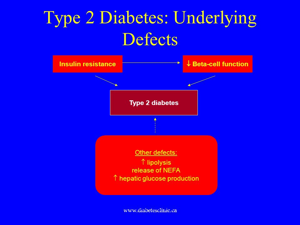 Type 2 Diabetes: Underlying Defects