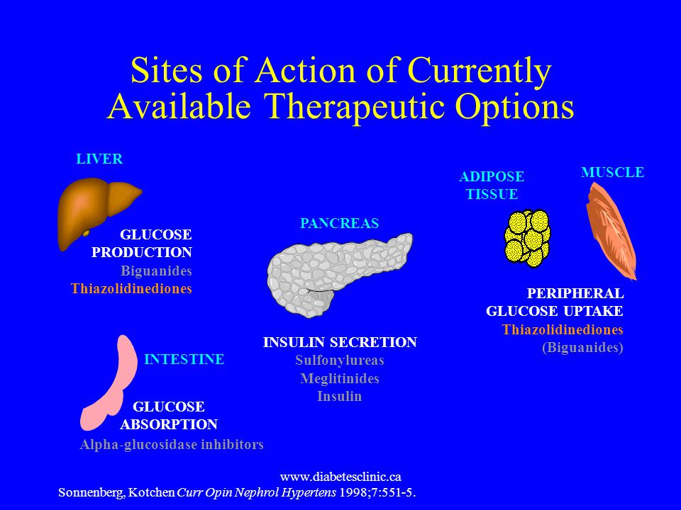 Sites of Action of Currently Available Therapeutic Options