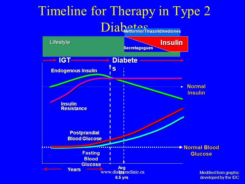 Timeline for Therapy in Type 2 Diabetes