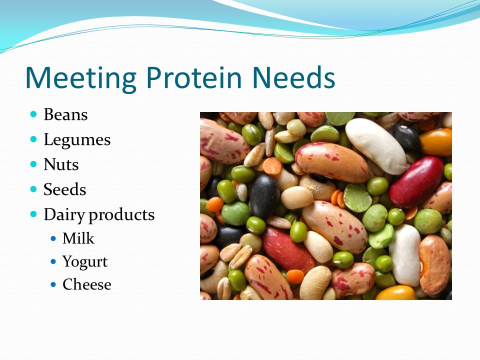 Meeting Protein Needs Beans Legumes Nuts Seeds Dairy products Milk
