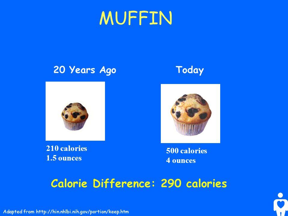 MUFFIN Calorie Difference: 290 calories 20 Years Ago Today