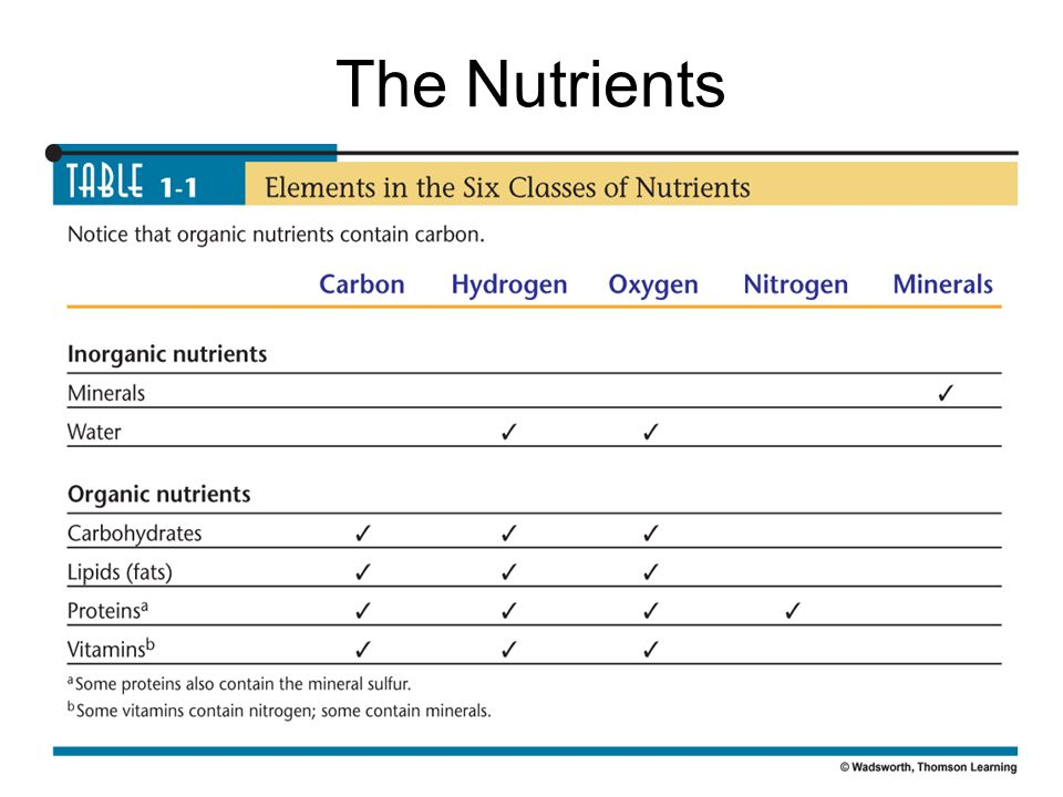 The Nutrients The Nutrients