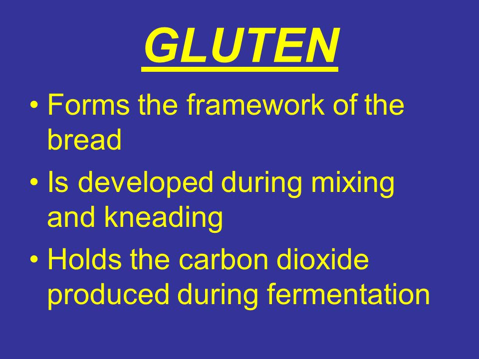 GLUTEN Forms the framework of the bread