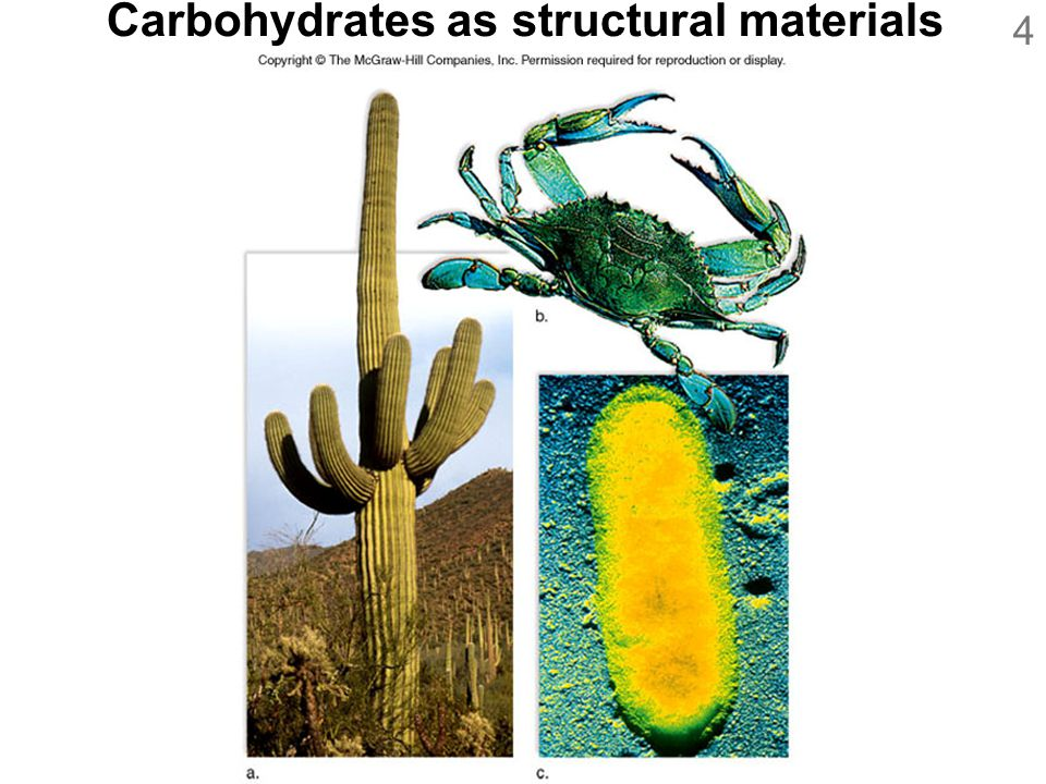 Carbohydrates as structural materials