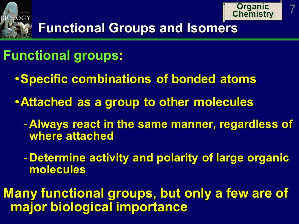 Functional Groups and Isomers