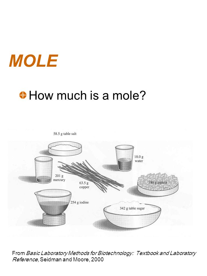 MOLE How much is a mole.