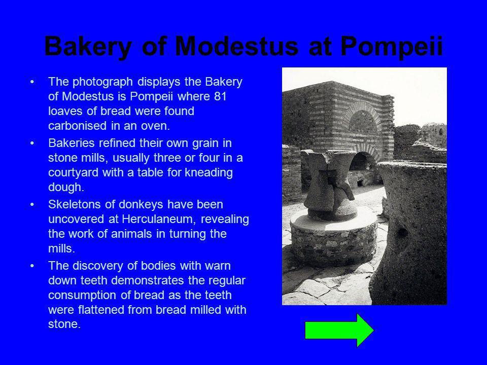Bakery of Modestus at Pompeii