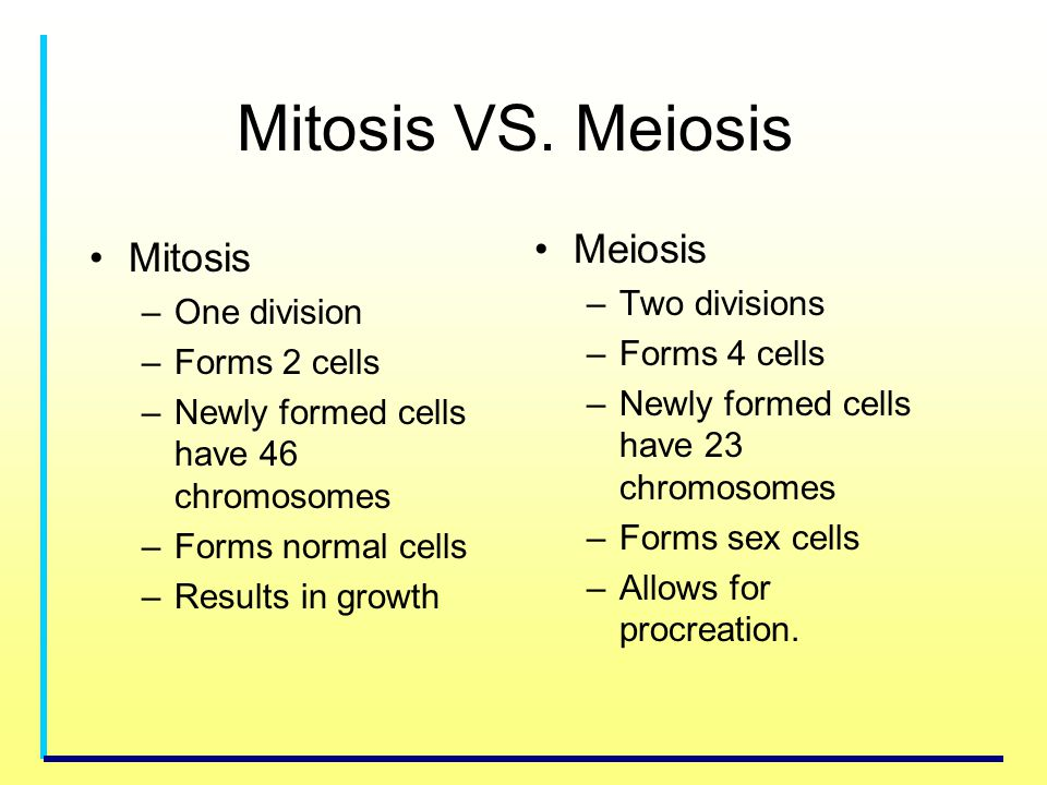 Mitosis VS. Meiosis Meiosis Mitosis Two divisions One division