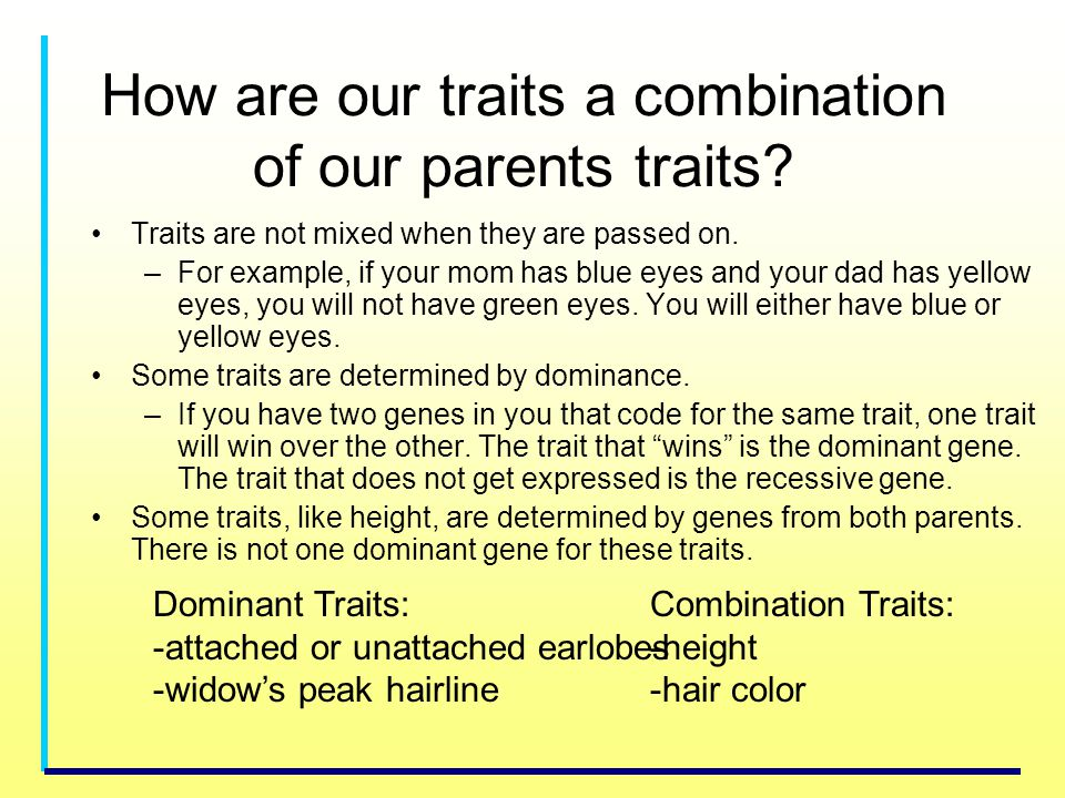 How are our traits a combination of our parents traits