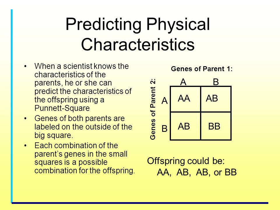 Predicting Physical Characteristics