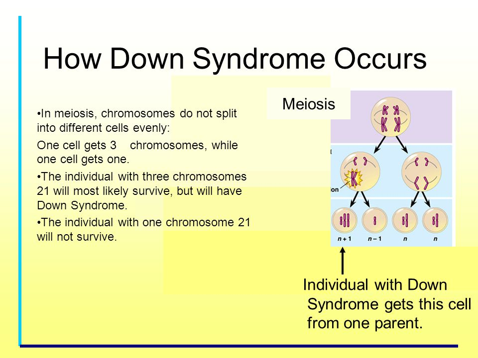 How Down Syndrome Occurs
