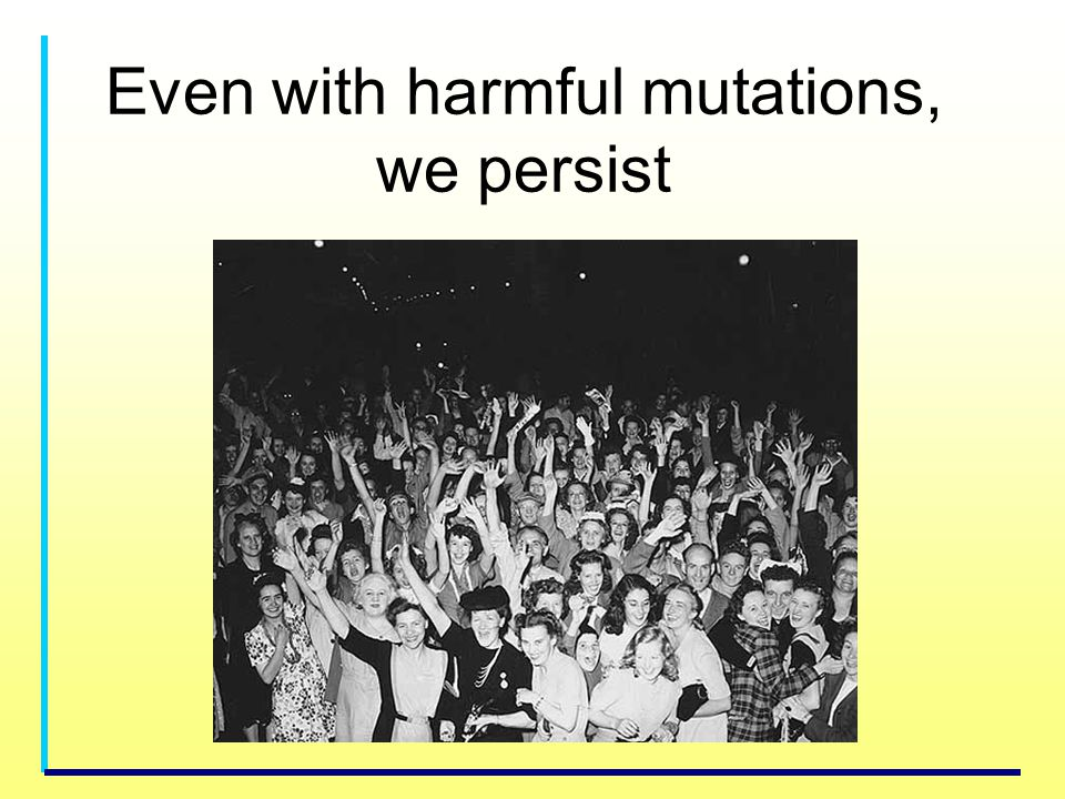 Even with harmful mutations, we persist