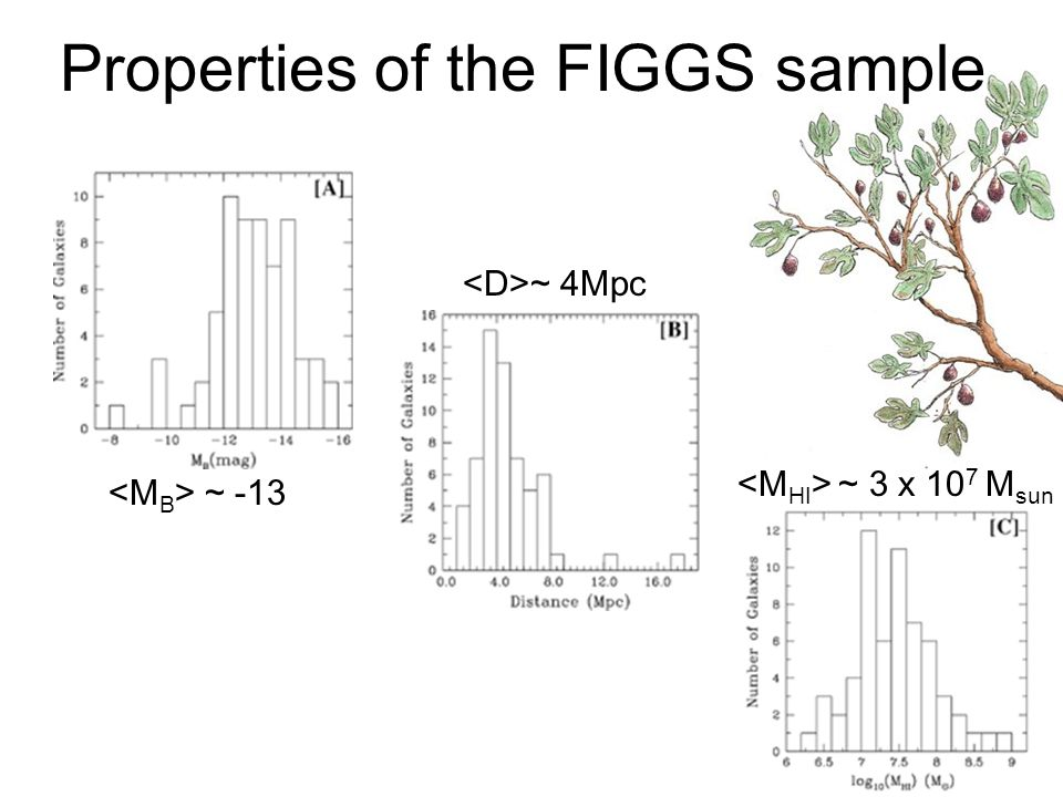Properties of the FIGGS sample
