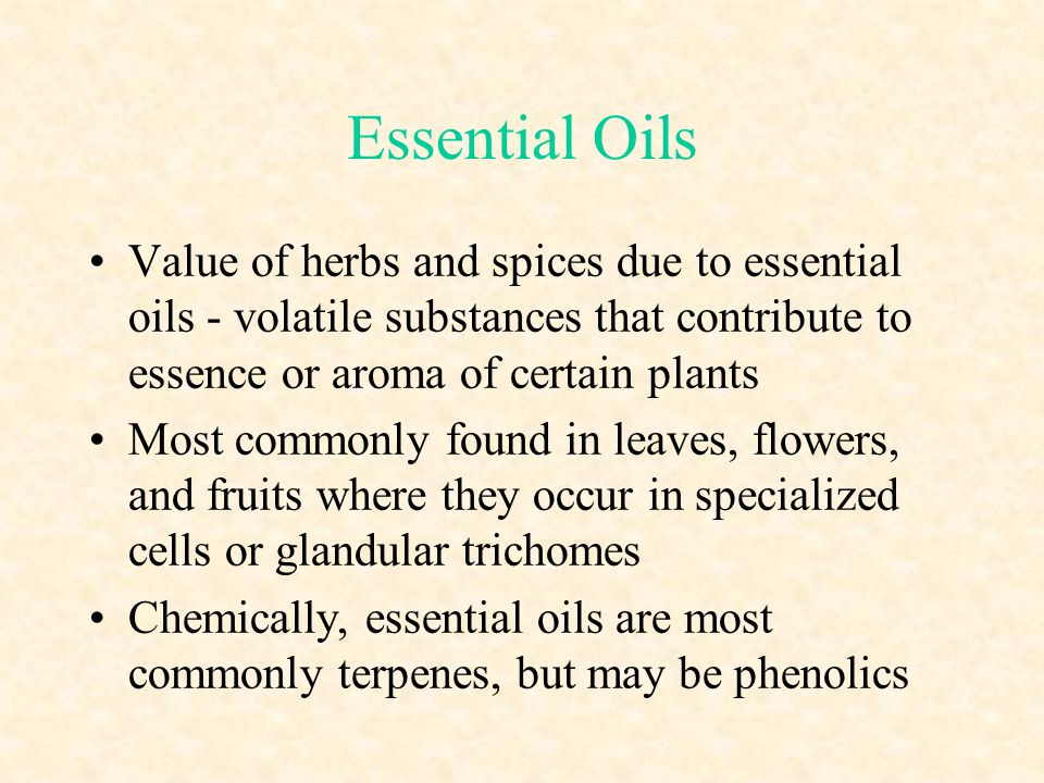 Essential Oils Value of herbs and spices due to essential oils - volatile substances that contribute to essence or aroma of certain plants.