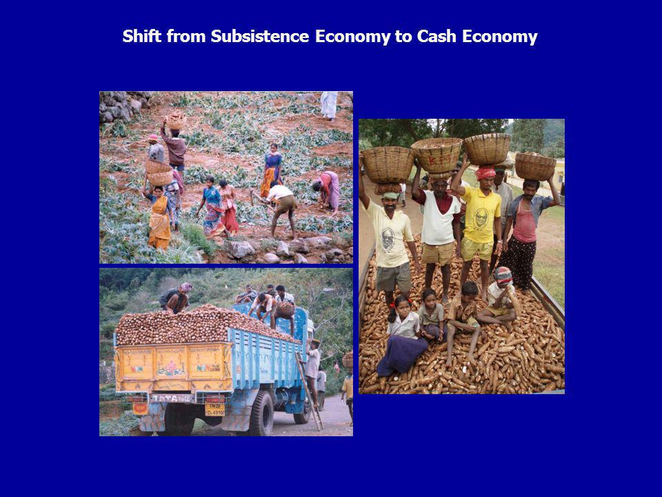 Shift from Subsistence Economy to Cash Economy