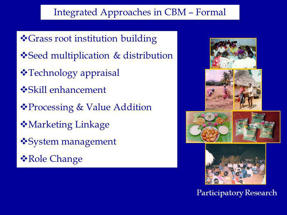 Integrated Approaches in CBM – Formal