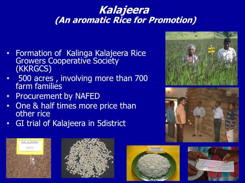 Kalajeera (An aromatic Rice for Promotion)