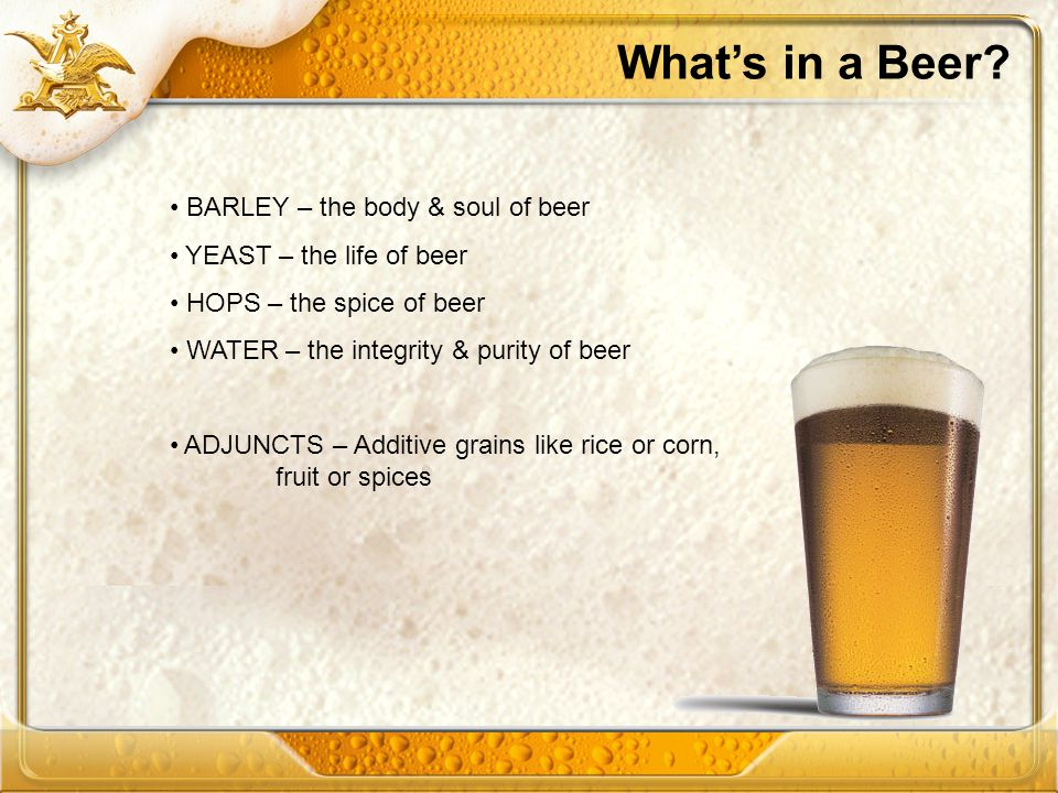 What's in a Beer BARLEY – the body & soul of beer