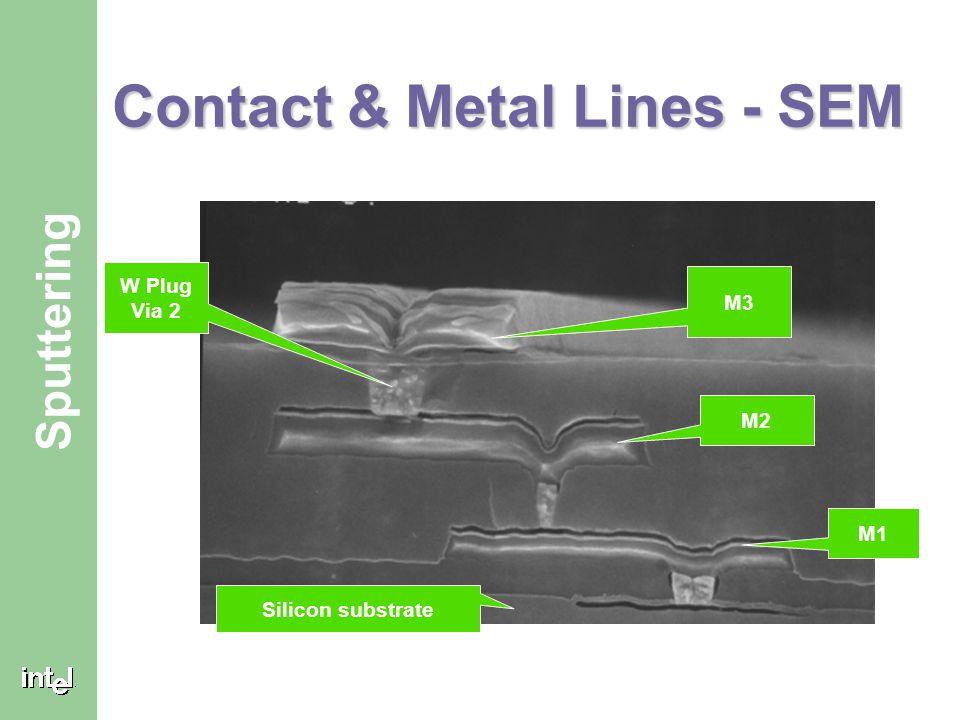 Contact & Metal Lines - SEM