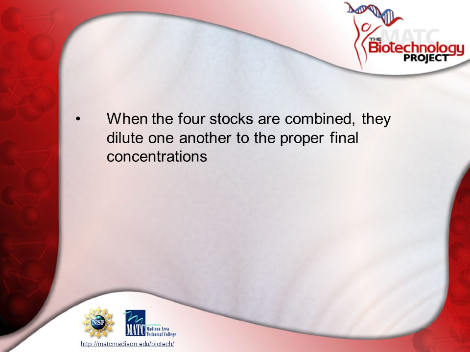 When the four stocks are combined, they dilute one another to the proper final concentrations