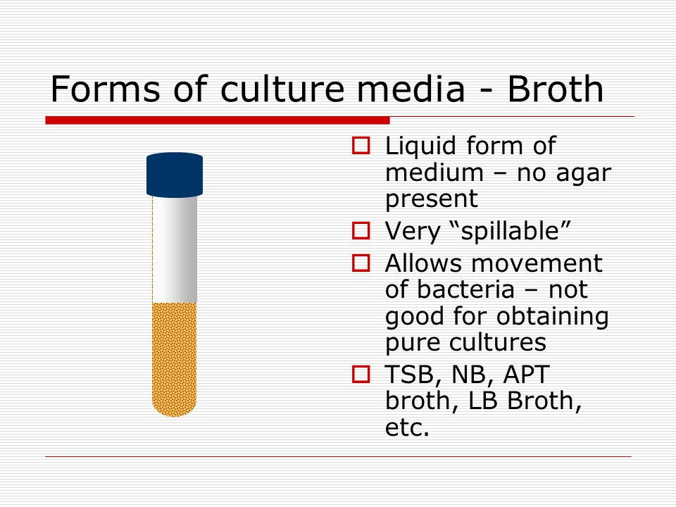 Forms of culture media - Broth