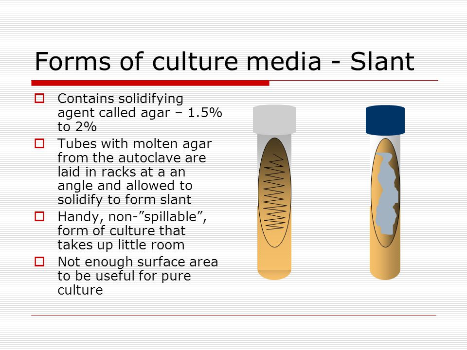Forms of culture media - Slant