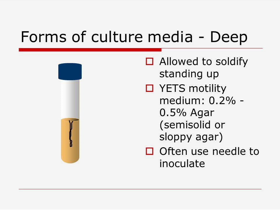 Forms of culture media - Deep
