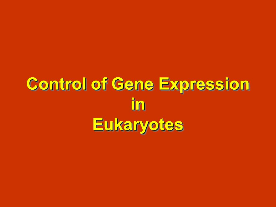 Control of Gene Expression in Eukaryotes
