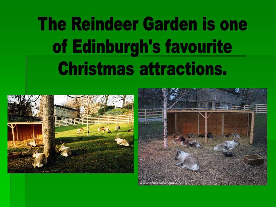 The Reindeer Garden is one of Edinburgh s favourite