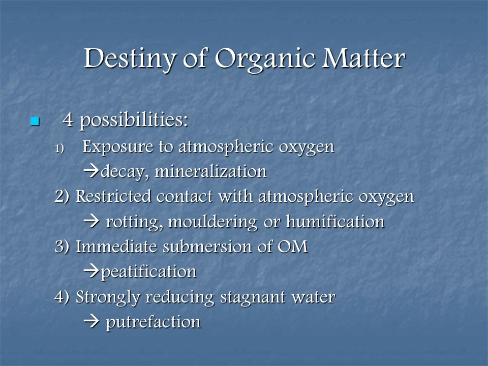Destiny of Organic Matter