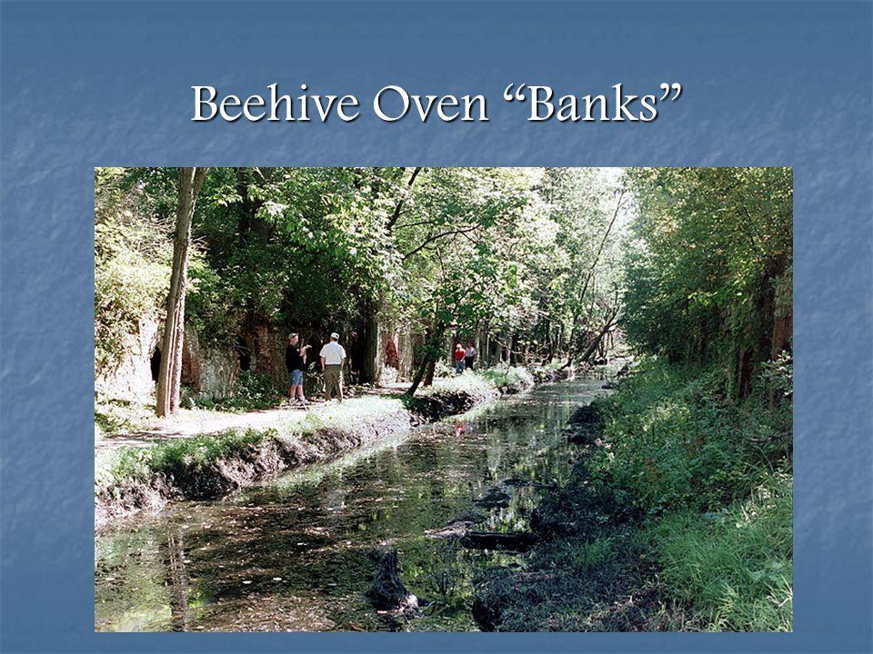 Beehive Oven Banks