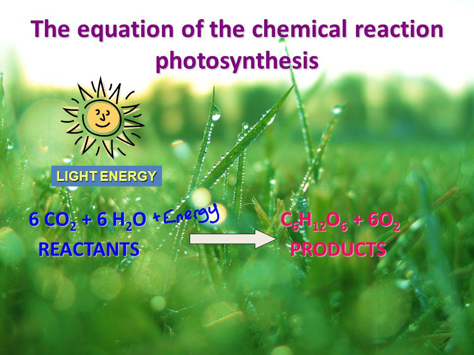 The equation of the chemical reaction photosynthesis