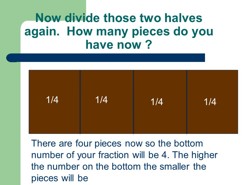 Now divide those two halves again. How many pieces do you have now