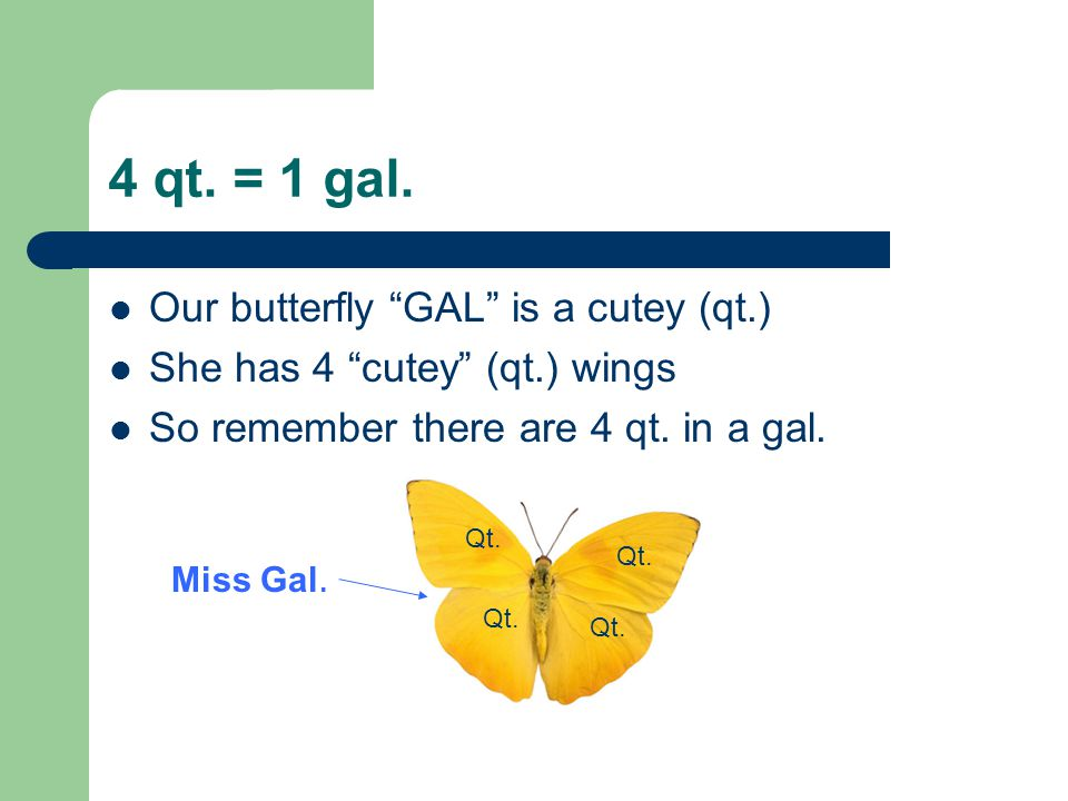 4 qt. = 1 gal. Our butterfly GAL is a cutey (qt.)